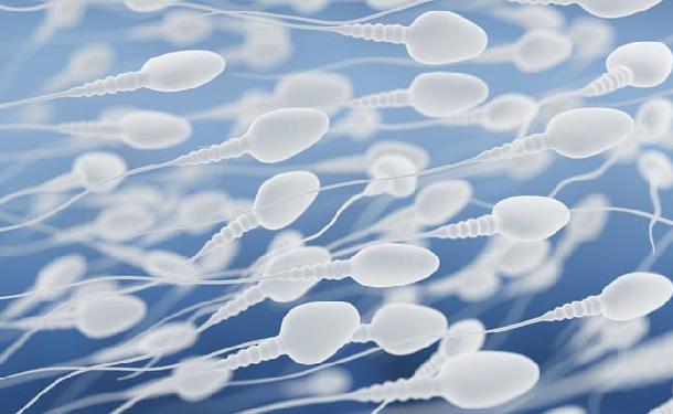 šanca na tehotenstvo z análny sex Najlepšie Celeb porno